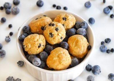 Blueberry Protein Bites